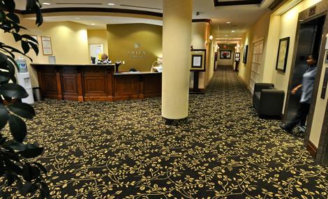 Carpeting 1.jpg