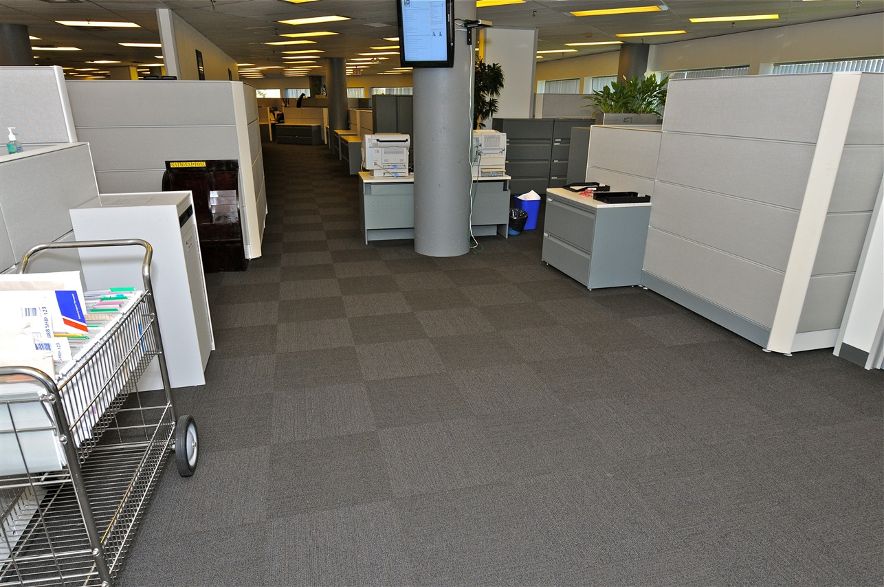 Carpeting 7.jpg