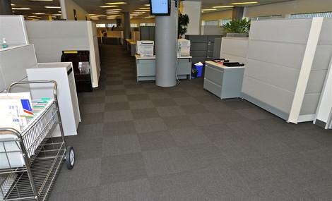 Carpeting 7.jpg