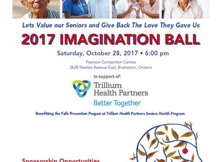 The 2017 IMAGINATION BALL