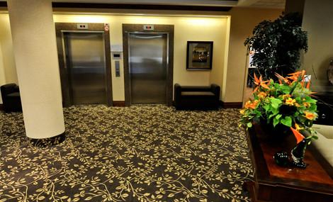 Carpeting 2.jpg