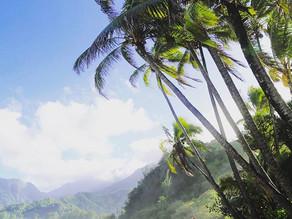 Moving to HAWAI'I