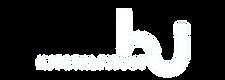 logo(w).png