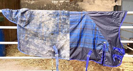 couverture pressing bleu.jpg