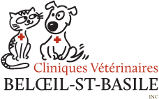 Cliniques veterinaires Beloeil-Saint-Bas