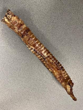 Whole Trachea