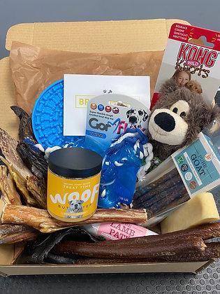 Deluxe Treat & Toy Box
