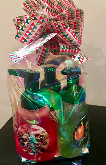 3 Foaming Hand Wash Gift Package
