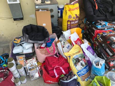3. Spendenfahrt ins Tierheim Senica