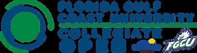 2022 Finemark-FGCU Collegiate Logo_LR-Pr