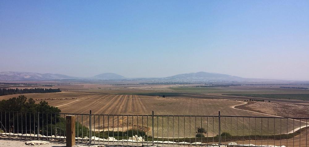 Vallée de Jezréel avec le Mont Thabor arrondi au fond  (Albert Tour Guide Israel)