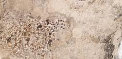 albert-tours-israel-little-petra-mosaic.