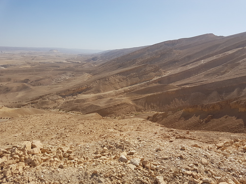 View to the South (Albert Benhamou Tour Guide Israel)