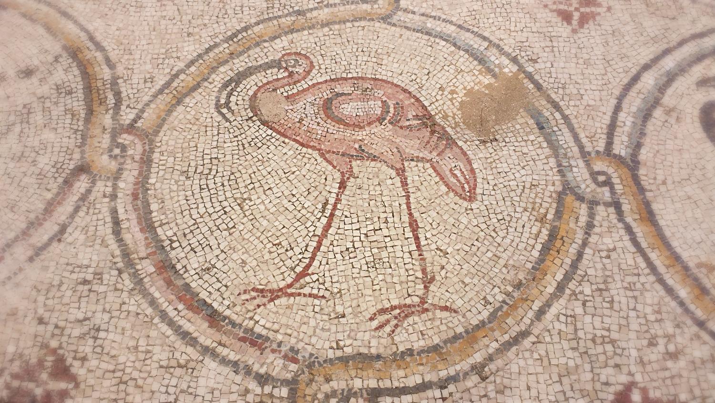 Birds mosaics of Caesarea