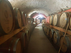Mony Vineyards