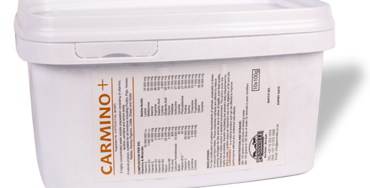 CARMINO PLUS - 100GR