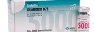 NOBILIS GUMBRO D78 - 1000D
