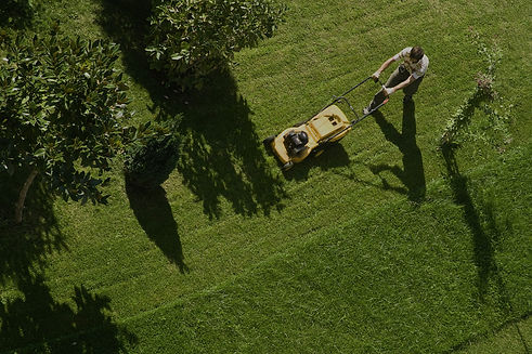 Lifestyle block Lawn Mowing Professionals