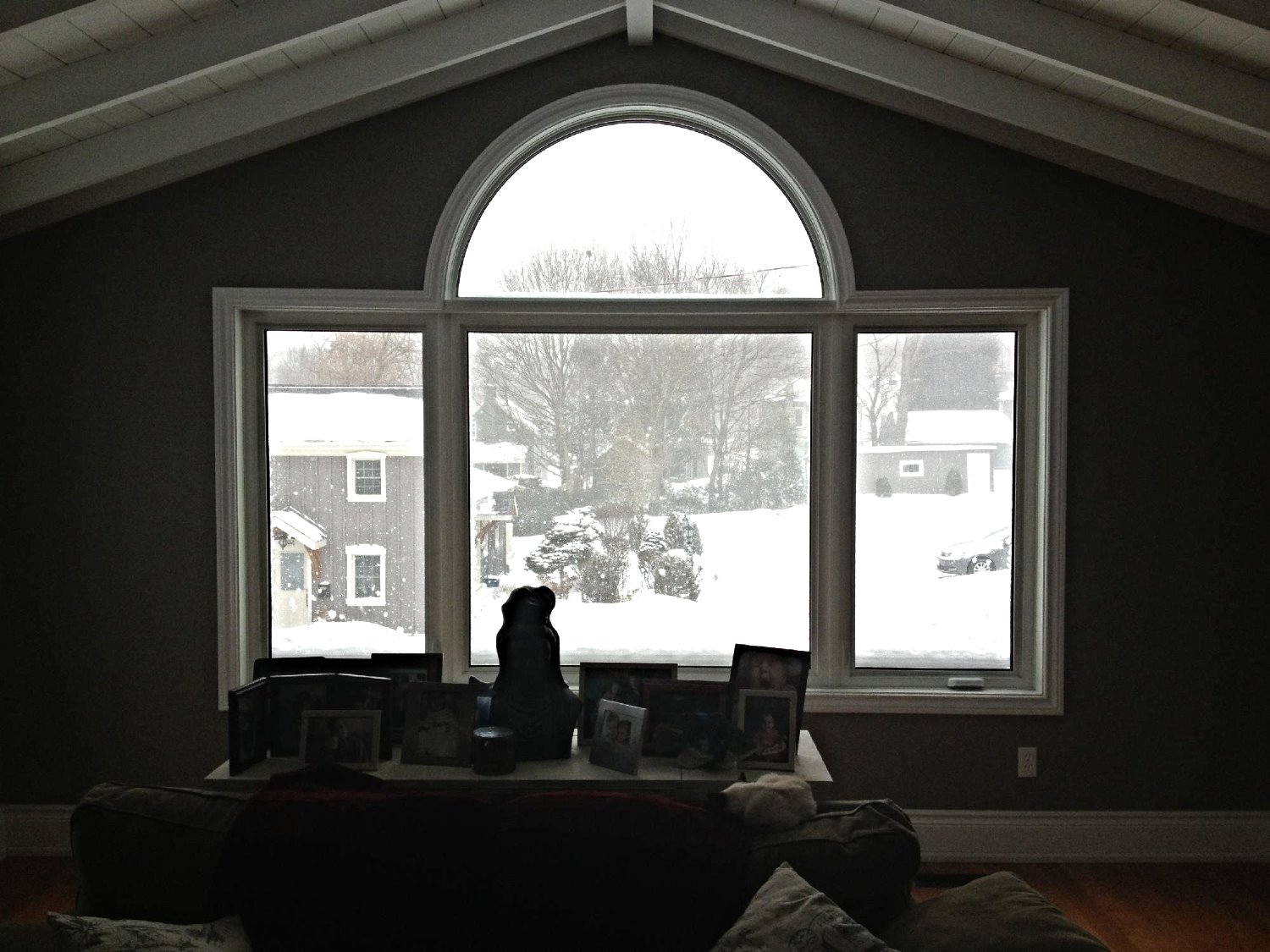 Window installation Newmarket