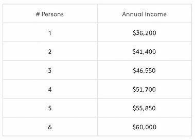 Chart of Income 2020-2021.jpg