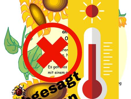 Absage wegen Hitze: Sommerfest