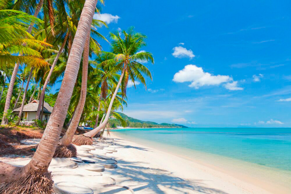 individual-tour-samui-08_medium
