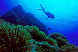 scuba-diving-samui-ko-tao-06_medium