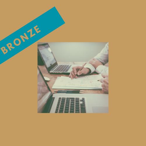 BRONZE Coaching Package