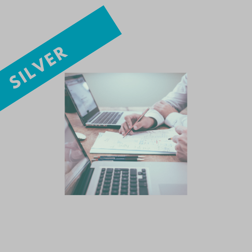 SILVER Coaching Package