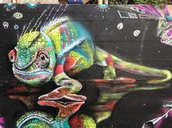 Chameleon of dmt