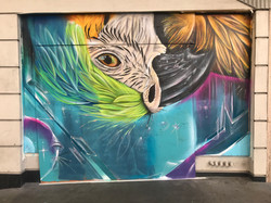 Macaw located on Geary Street in San Francisco