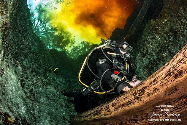 Deco-Services: A Variety of Underwater Imagery | Scuba & H2O