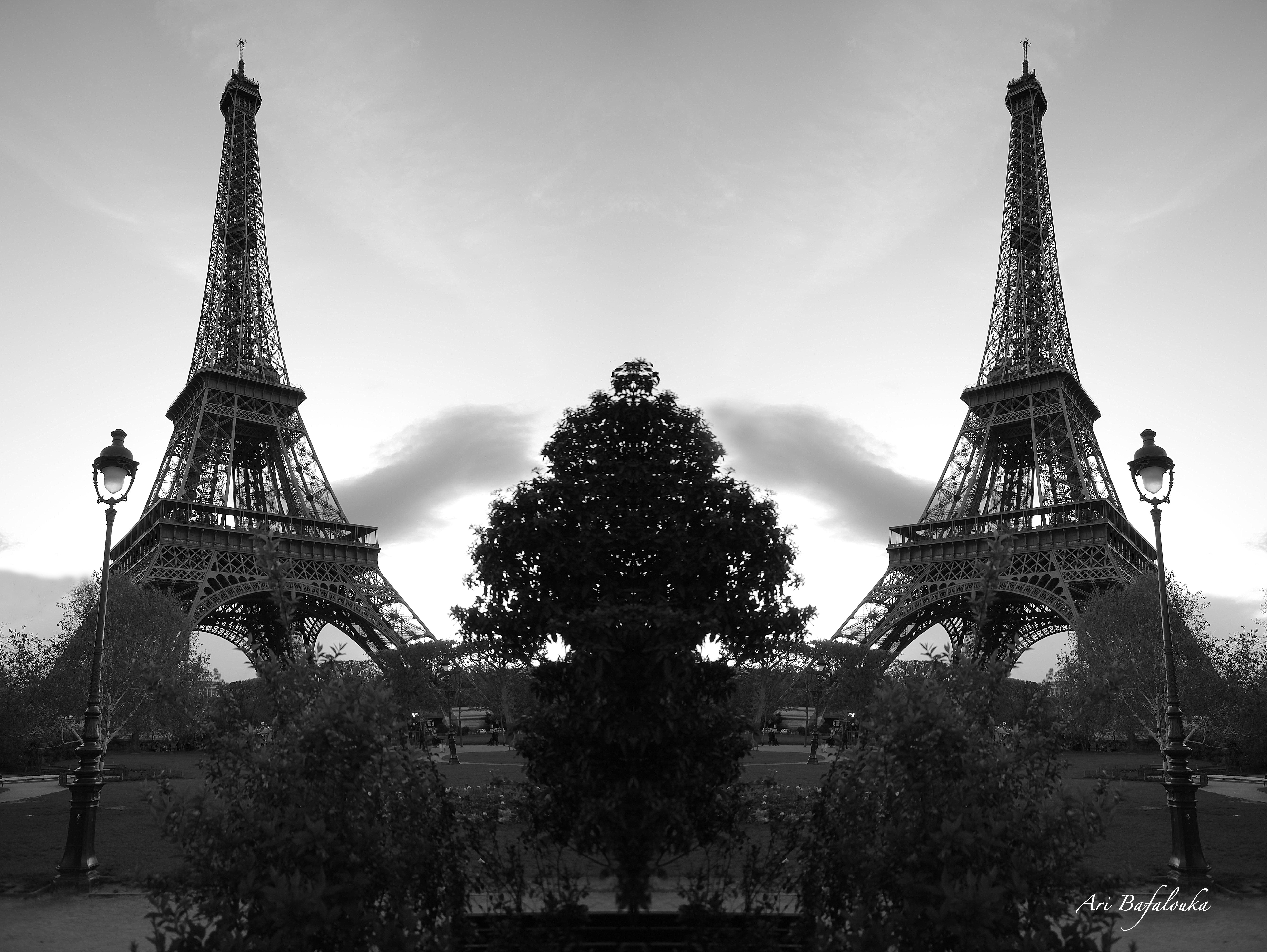 Eiffel Twins 3.jpg
