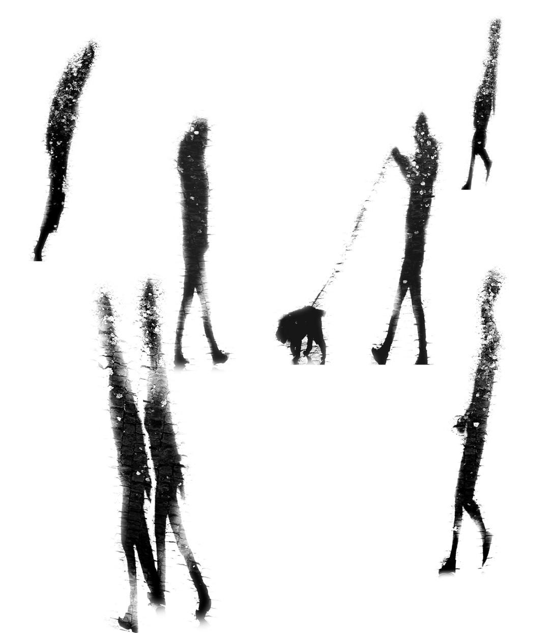 Shadows 1b.jpg