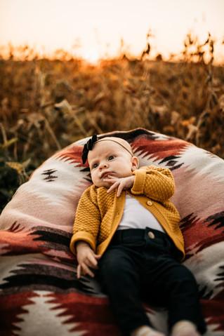 Of Wild Dawn Photography- Ottawa Ontario, Crystal Dawn Cook-8708.jpg