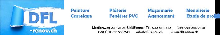 DFL nouveau logo 2020.png