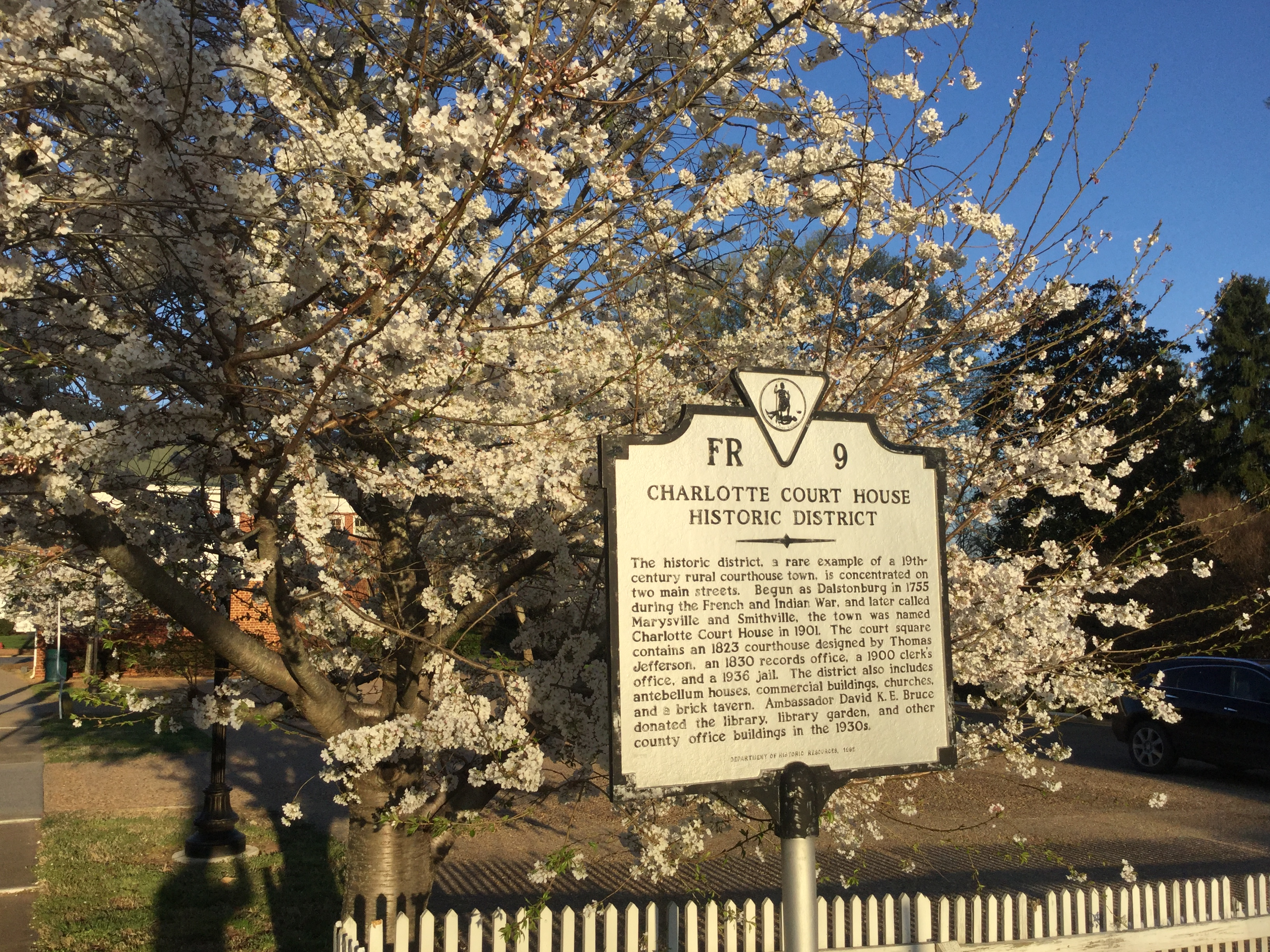 charlotte court house spring 2016 cherry blossoms