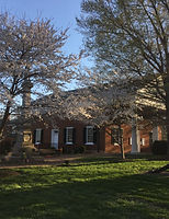 charlotte court house spring 2016 cherry