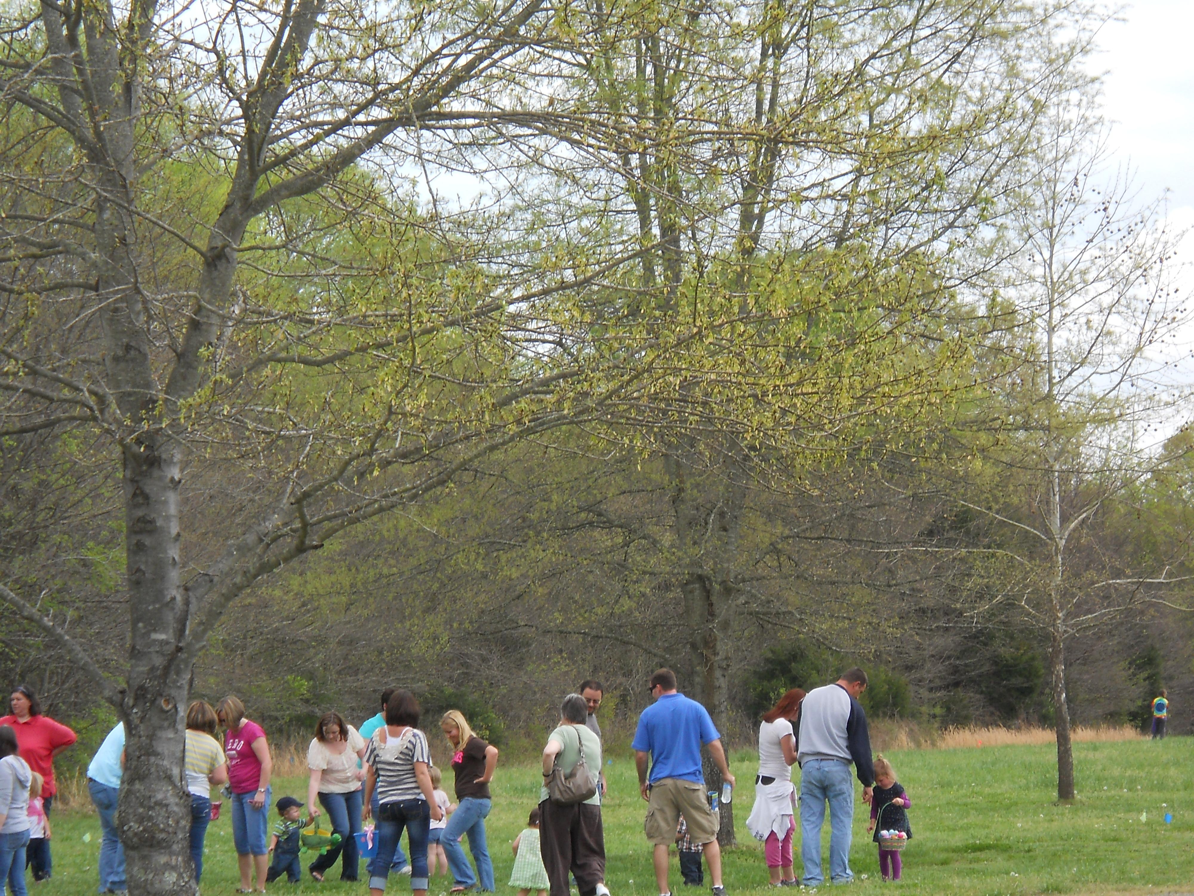 Easter Egg Hunt 2012
