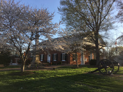 charlotte court house spring 2016 cherry blossoms (1)