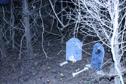 Haunted Harvest Hayride 2009