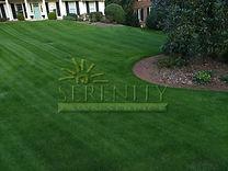 Perennial Rye Sandy Springs.jpg