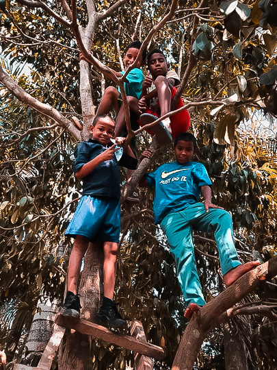 Boys Home - Tree Climbing.jpg
