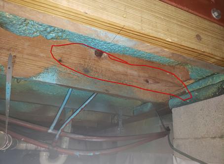 Repairing Over-Notched Floor Joists.