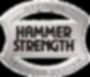 HS-Training-Center_Emblem1.png