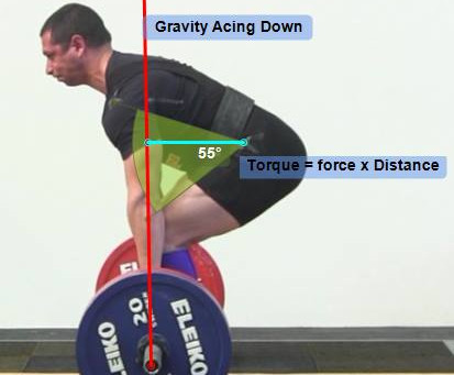 Joint Torque and the Deadlift