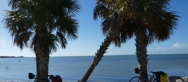 Freewheeling through Florida