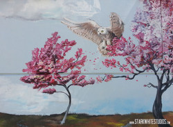 Owl in a cherry tree