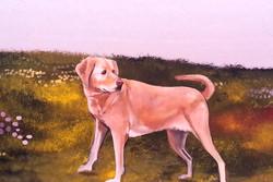 Excerpt of Dog Park Mural