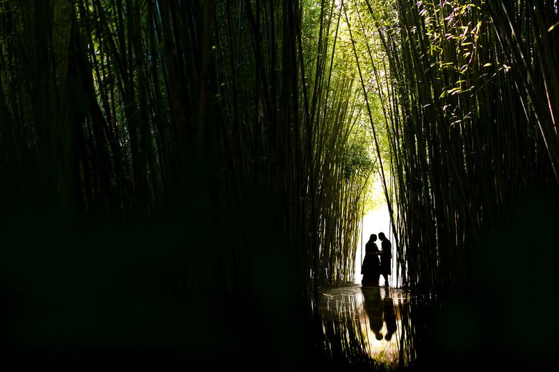 Sonia and Gautam, Brooklyn Botanical Garden Wedding